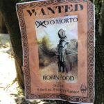 Robin Hood è ricercato